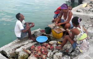 """Family shelling crabsl"" Santa Cruz del Islote Island, Colombia-The worlds most densely populated island ©John Lamkin"