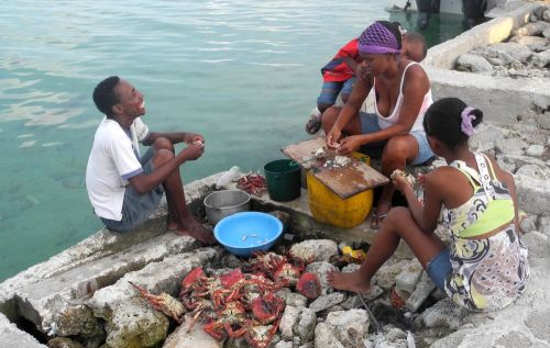 """Family shelling crabs"" Santa Cruz del Islote Island, Colombia-The worlds most densely populated island  ©John Lamkin"